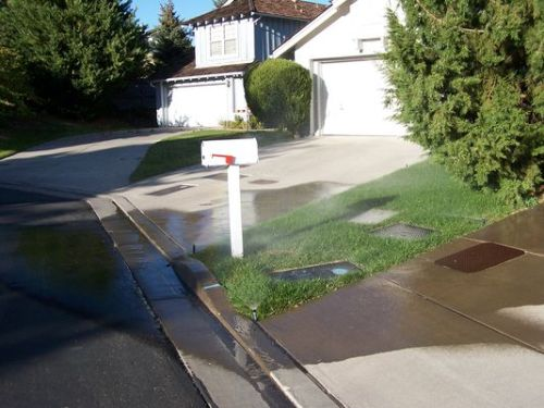 wateringthepavement